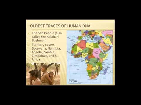 Video 1: First Humans to Neolithic Revolution