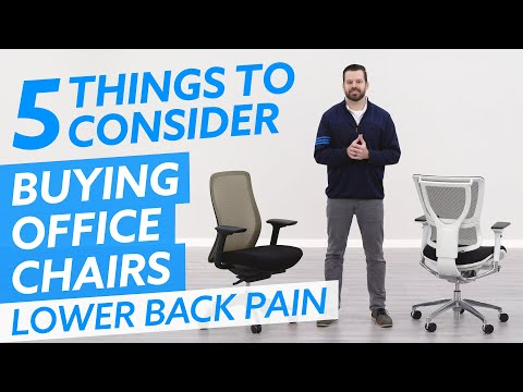 Office Chairs For Lower Back Pain: 5 Things You Must Consider