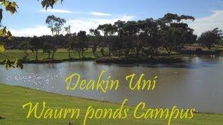 Deakin Uni, waurn ponds campus, Geelong, Australia