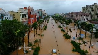 Typhoon Sarika Causes Severe Water-logging, Damages Billboard, Trees in South China