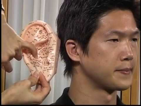 Auricular Acupuncture - Traditional Chinese Medicine and Acupuncture