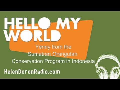 Interview with Yenny from the Sumatran Orangutan Conservation Program in Indonesia