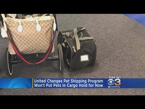 United Airlines Changes Pet Shipping Program