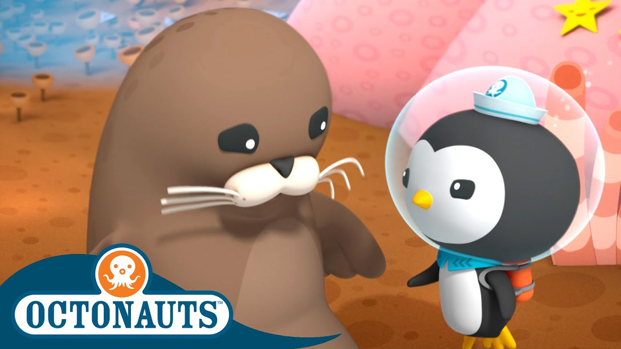 Octonauts - The Harbour Seals | Cartoons for Kids | Underwater Sea Education