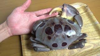 『猛毒のカニ』アカモンガニをさばいて食べてみた結果がこちら。