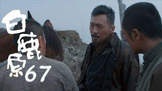 白鹿原 | White Deer 67【DVD版】(張嘉譯、秦海璐、何冰等主演)