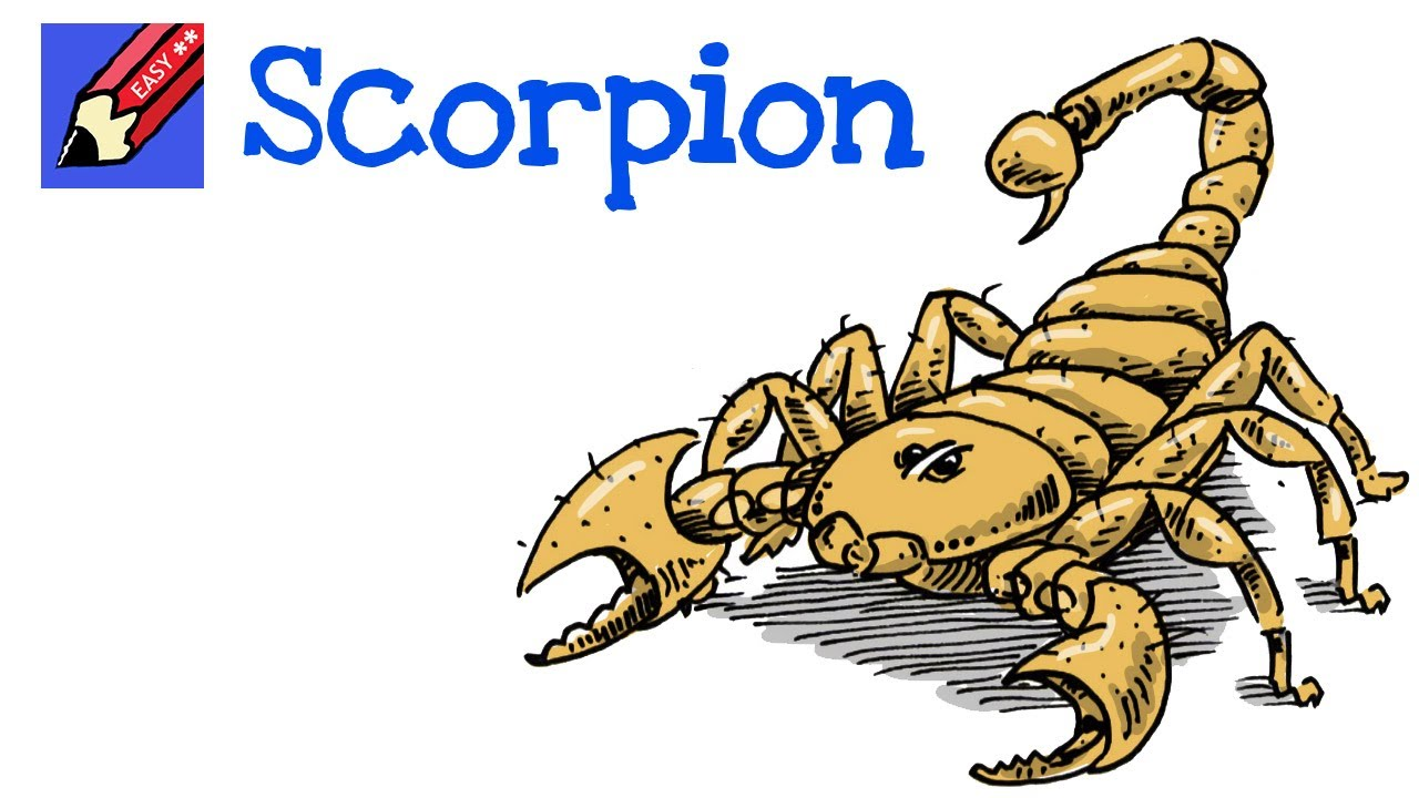 Uncategorized How To Draw A Scorpion Step By Step how to draw a scorpion real easy youtube