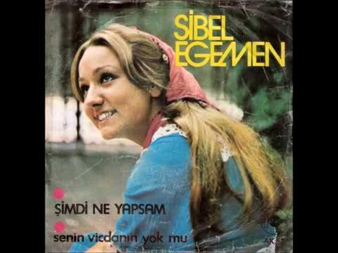 Sibel Egemen - Senin Vicdanin Yok mu (1976) indir