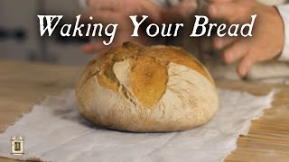 Sourdough from Leaven:  18th Century Breads, Part 5. Cooking with Jas. Townsend and Son S2E16