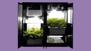 Hydroponics Grow Box Garden - 3 In 1 - 44 Plant