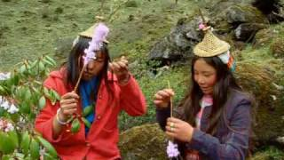 Two girls from Bhutan (Druk Yul) singing and picking flowers