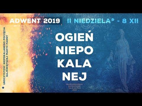 Ogień Niepokalanej: DajęSłowo - II niedziela Adwentu A - 8 XII 2019