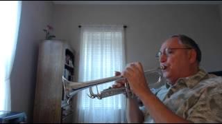 GUANTANAMERA - TROMPETA - MY TRUMPET VERSION