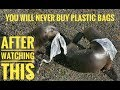 #BeatPlasticBags I Fight Plastic Pollution I My Mission Green Earth I Ananta Khurana