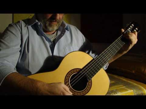 Avantgarde Meets Classic - SUNNYROSE - Flamenco Flamenca Negra Classical Guitar Luthier Spain