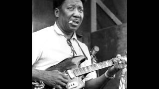 Muddy Waters-Got My Mojo Working/Lyrics