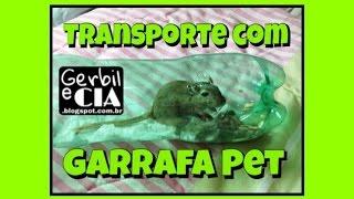 Como transportar roedor em uma garrafa pet - Gerbil / Hamster / Camundongo / Rato