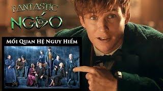 Quan Hệ Giữa Các Nhân Vật trong Fantastic Beasts 2 và Harrry Potter - by Ngáo phép thuật đầy mình