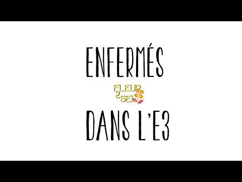 ENFERMÉS DANS L'E3 / Vendeurs-Editeurs / Microsoft Concrétise. Fleur2SEL | 26_05_2018  |