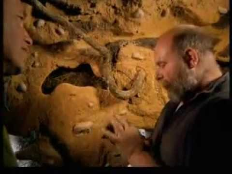 The Burrowers: Animals Underground  Episode 2