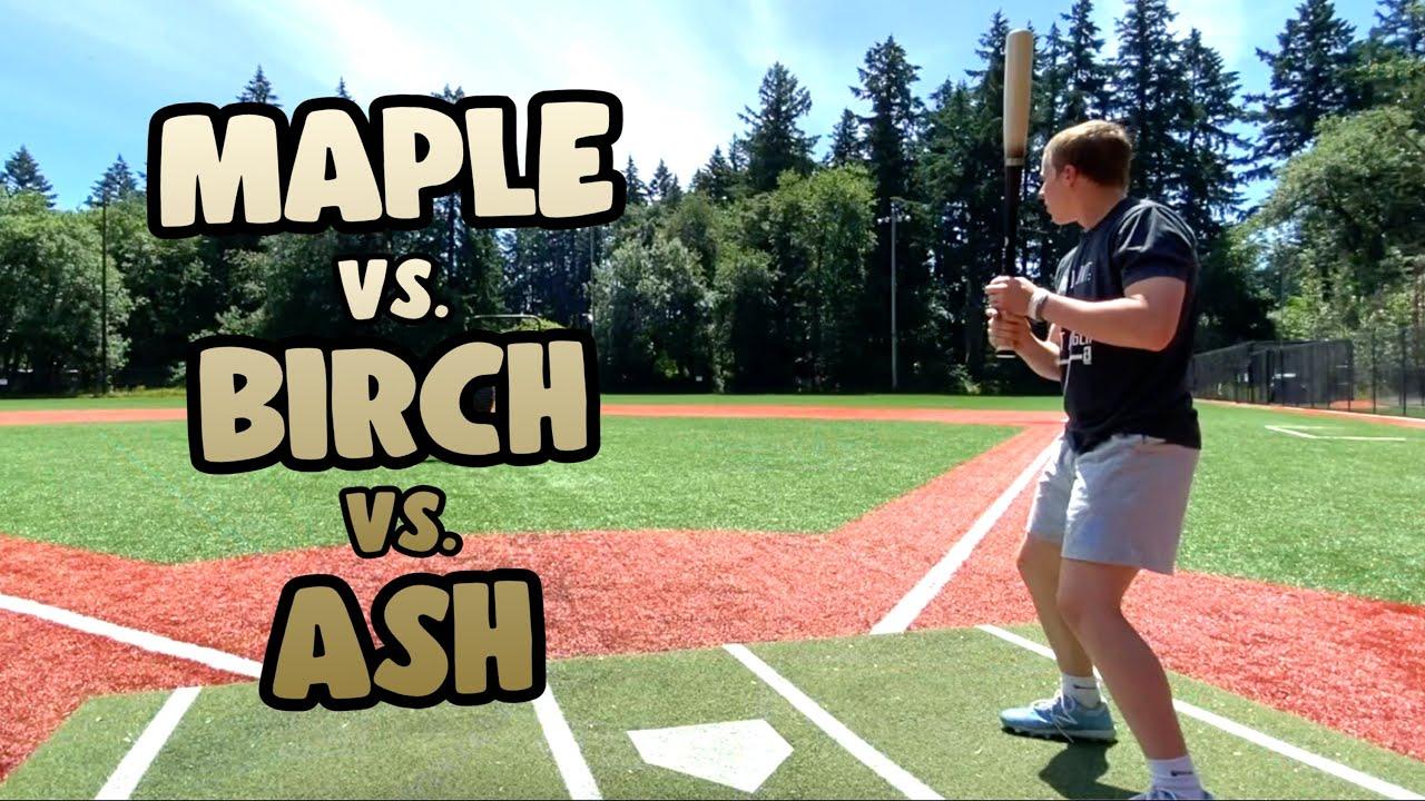 ASH vs MAPLE vs BIRCH - Which is better? Wood Baseball Bat Reviews