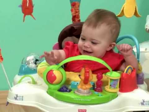 Fisher-Price Precious Planet Jumperoo