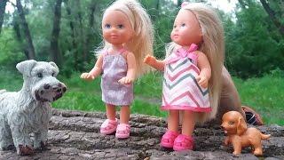 Мультик с куклами. Эви выгуливает собак. Видео для девочек. Куклы Пупсики.