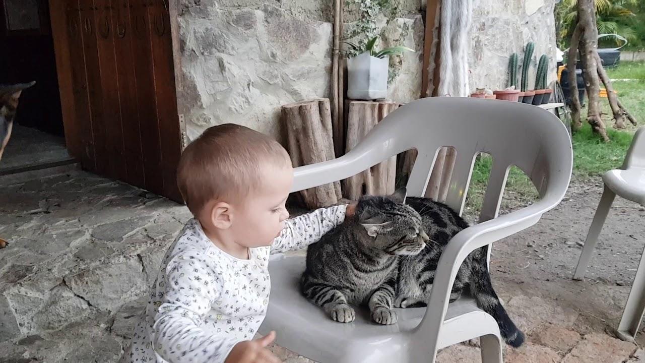 Lucy Cat Muschi