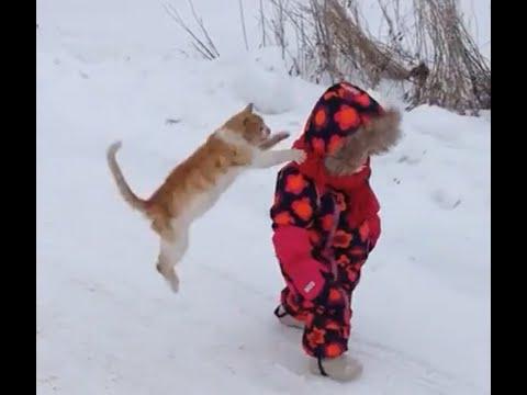 Dog Attacks Baby Video