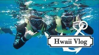 2017夏威夷旅行日记♥HAWAII VLOG 吃货去旅游
