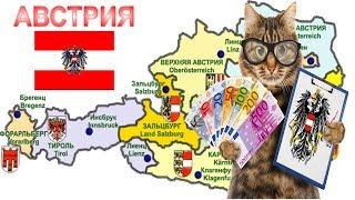 Расходы на кота в Австрии. Цены на ветуслиги/медикаменты/еду
