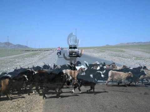 Bicycle tour in Mongolia 2015 v2