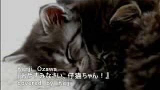 小沢健二 『おやすみなさい、仔猫ちゃん!』歌ってみました。