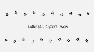 Команда Rachel Wow лежанки и аксессуары для собак и кошек