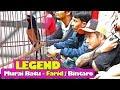 Suara Burung Aksi Teriakan Maut Legend Tampil Ganas Murai Batu Milik Farid Bintaro  Mp3 - Mp4 Download