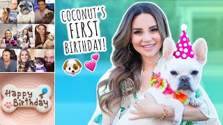 Throwing My Dog an EPIC Birthday Party!