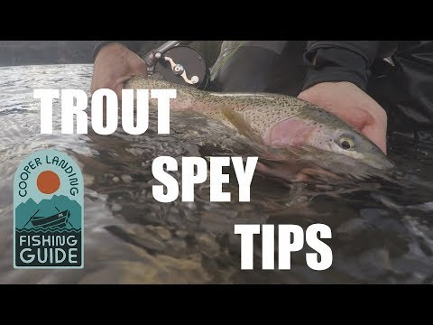 Trout Spey Fishing - Trout Spey Casting And Fishing Tips On The Kenai River