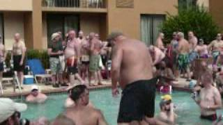 bears at pool party