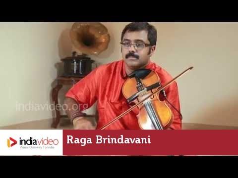 Raga Series - Raga Brindavani on Violin by Jayadevan
