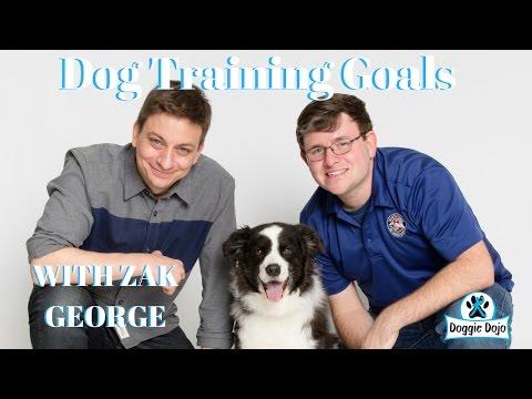 Dog Training Goals with Zak George Dog Training Revolution