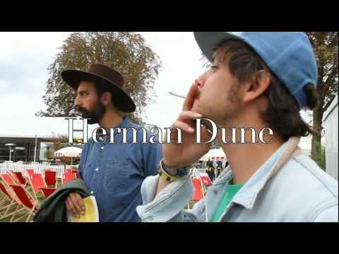 Herman Dune à Rock en Seine