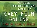 Pitbull Niebezpieczne Kobiety Cały Film Online / Oglądaj Pitbull Niebezpieczne Kobiety