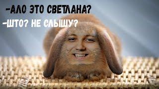 Звонок в Секс шоп Влюбленный Кролик