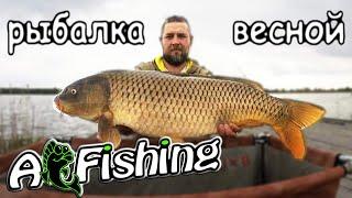 Рыбалка весной Флэт метод или карпфишинг на что лучше ловить карпа