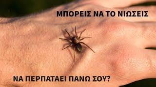 Μπορείς να τα νιώσεις να περπατάνε πάνω σου; - Creepypasta