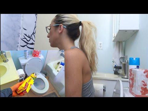 bag of chips.mov from YouTube · Duration:  2 minutes 54 seconds