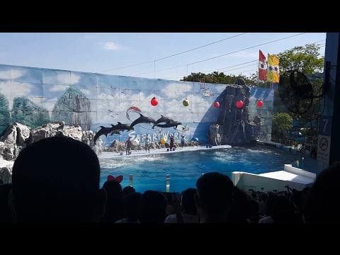 Imazing ThaiLand: Safari World Bangkok 2017