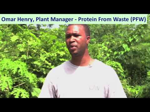 Omar Henry, Plant Manager, Protein From Waste (PFW) - Grenada