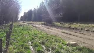 Probando el auto para el rally neuquino