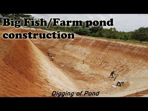 Fish Farming Using Rainwater | Farm & Fish Pond Construction | Rainwater Harvesting System | Pool